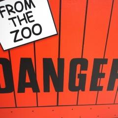 Dear Zoo - Lion Crate