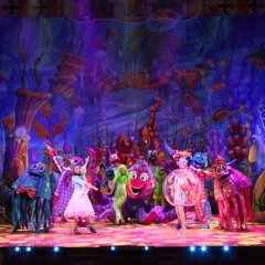 Tech-Dick-Whittington-2015-Newcastle-230-