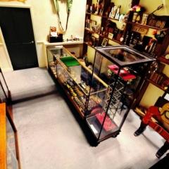 Shop-Interior-high-shot