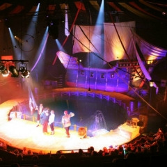 3D_Creations_Pirate_Live_Ship_Show-5-